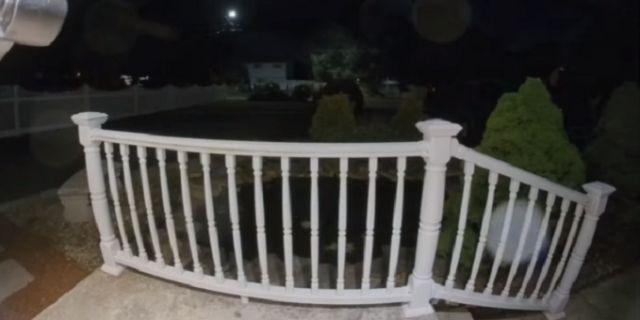 Fantasma Viral