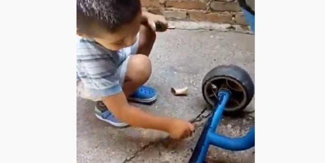 Video Viral Tik Tok